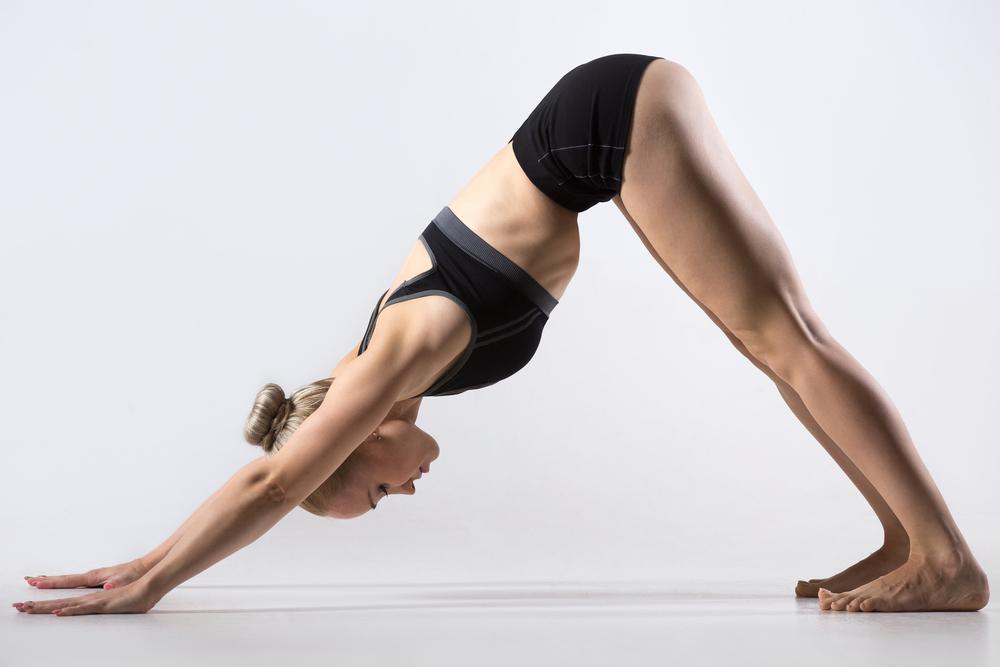 Parvatasana is the Fifth Posture of Sun Salutation. It is also called THE MOUNTAIN POSE.