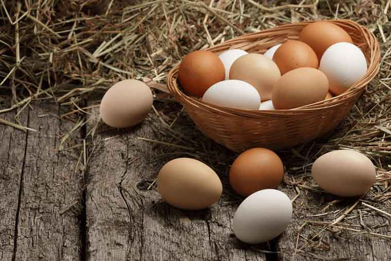How to get rid of dandruff naturally - Eggs