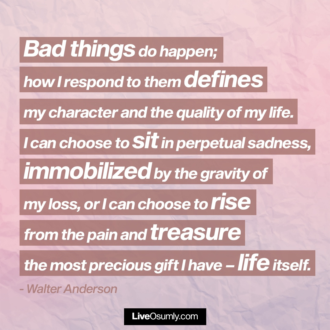 14. Walter Anderson Quote