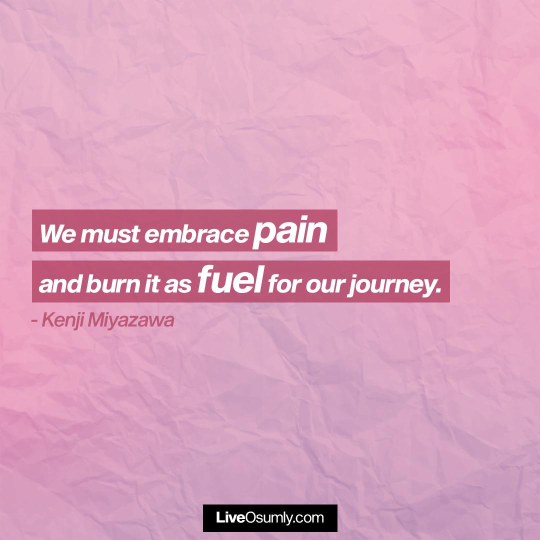 4. Kenji Miyazawa Quote on Pain